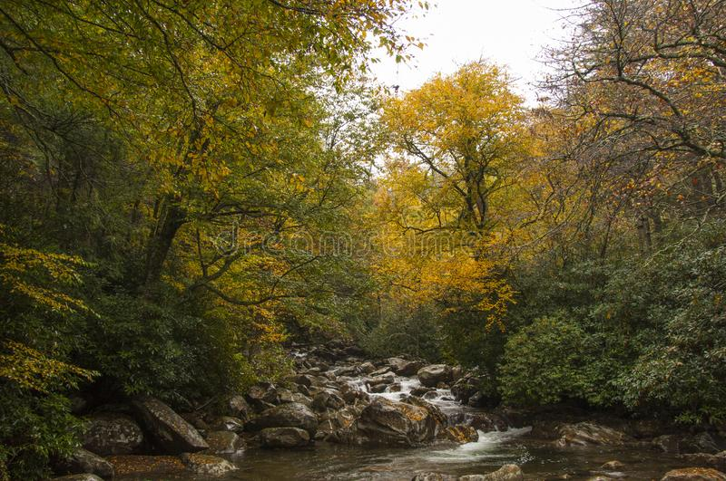 Mountain river at the beginning of fall. A mountain river flows downhill in the early days of fall getting ready for a cold winter stock photography