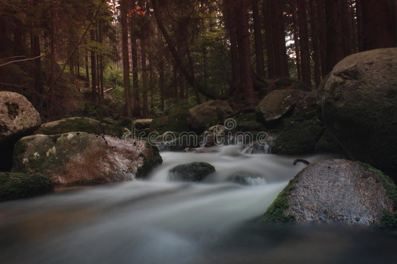 Mountain river. River forest life photo background nature flow stones excerpt Freshair stock images