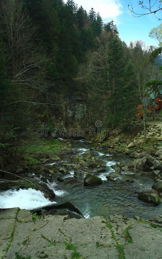 Mountain river in the gorge, summer hiking trails, recreation center. Landscape stock photos