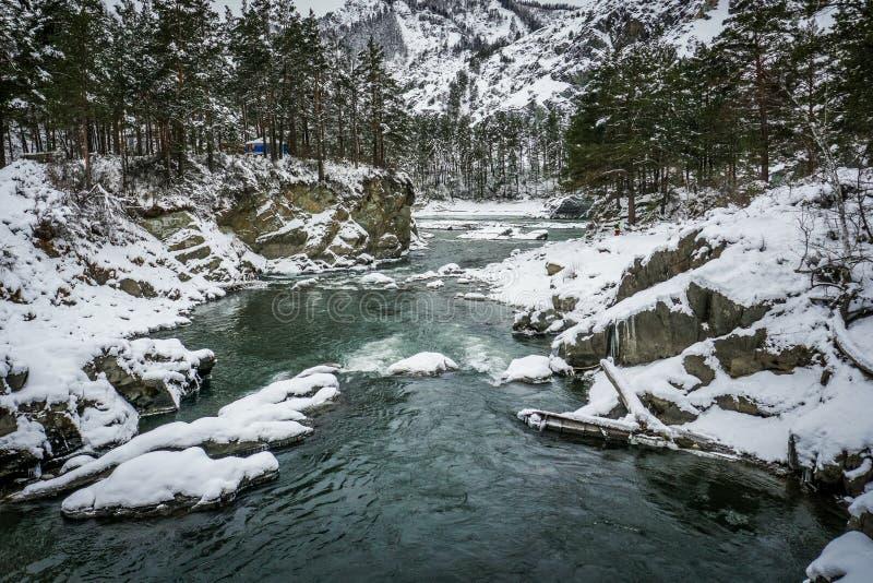 Mountain river Katun, Altai, Russia. A winter scenic. Mountain river Katun, Altai, Russia A winter scenic 2016 stock photos