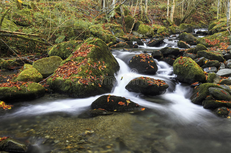 Mountain river in late Autumn royalty free stock image