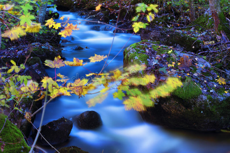 Mountain river in late autumn stock image