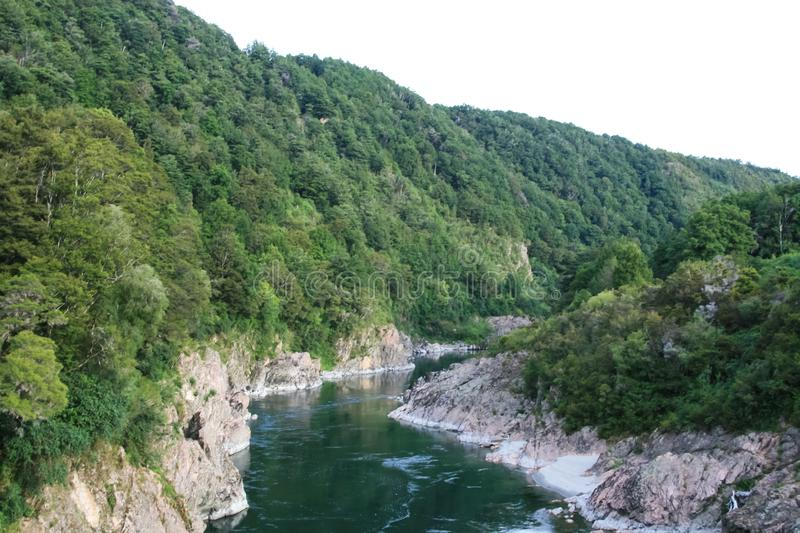 Mountain River in New Zealand. New Zealand stock images