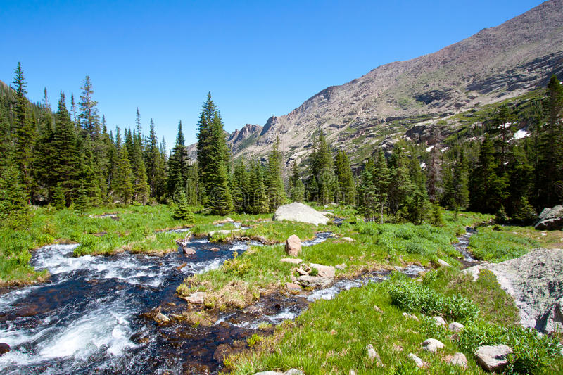 Mountain river in summer stock images