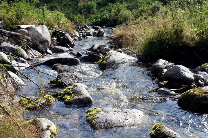 Mountain river water landscape. Wild river in mountains. Mountain wild river water. View stock photos