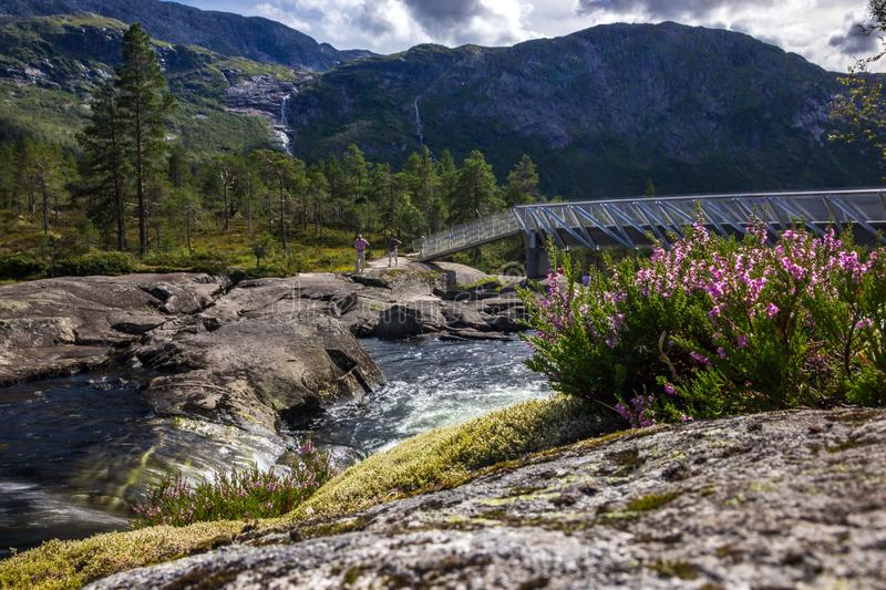 Mountain river and waterfall in Norway. Likholefossen waterfall and swift river in a mountains in Norway royalty free stock image