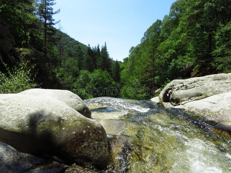 Mountain rivulet. Small river between big white stones. Gorge, green hills and coniferous trees. Limpid clear water, clean environment, nature, environment stock photo
