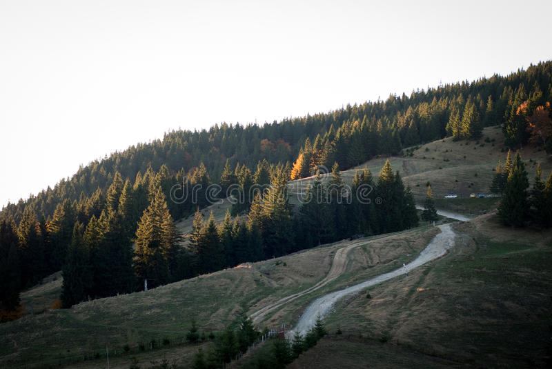Download Mountain road stock image. Image of sunrise, forest, paved - 27538499