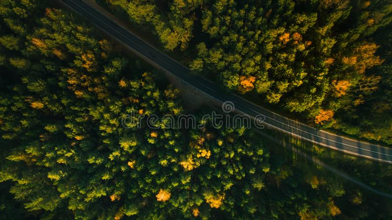 Mountain road and autumn trees above the forest. Yellow, red and green nature, high top view. Aerial drone shoot with wonderful te royalty free stock image