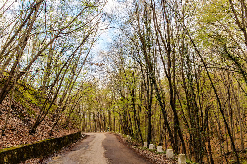 Mountain road in Crimea royalty free stock photos