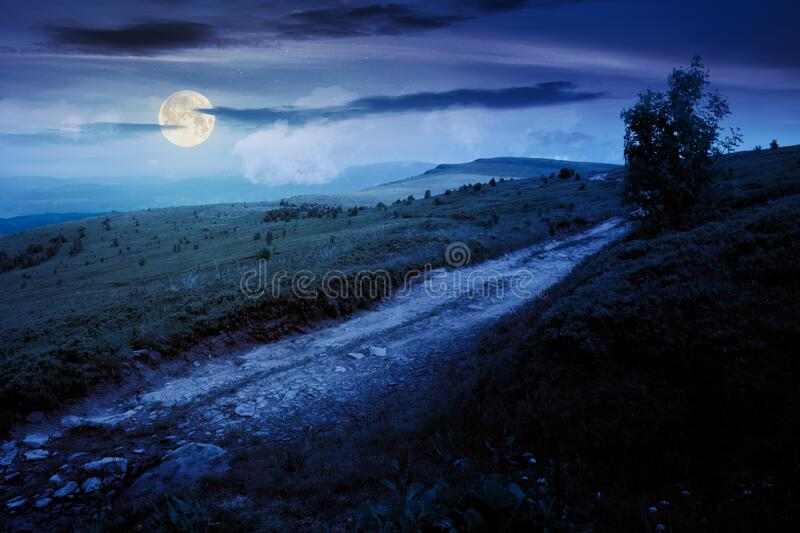 mountain road through grassy meadow at night stock images