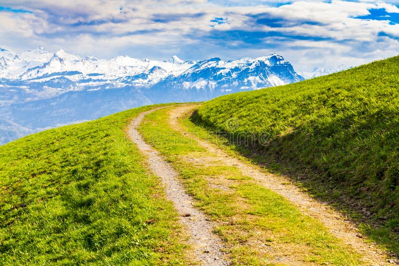 Mountain road leading through green meadow in Alps royalty free stock photo