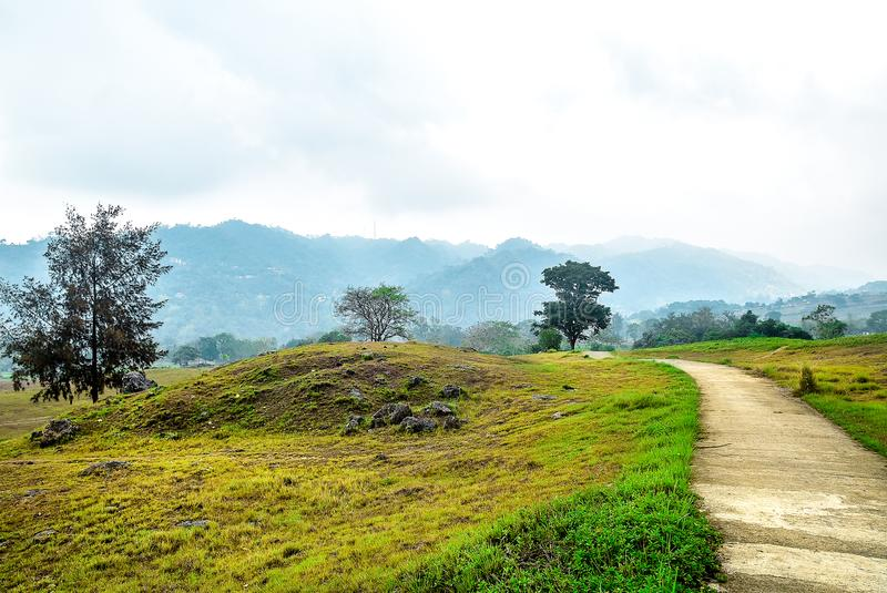 Mountain road with tress and grass landscape. A road to mountain with and grass landscape in a foggy background and cloudy skies landscape stock images