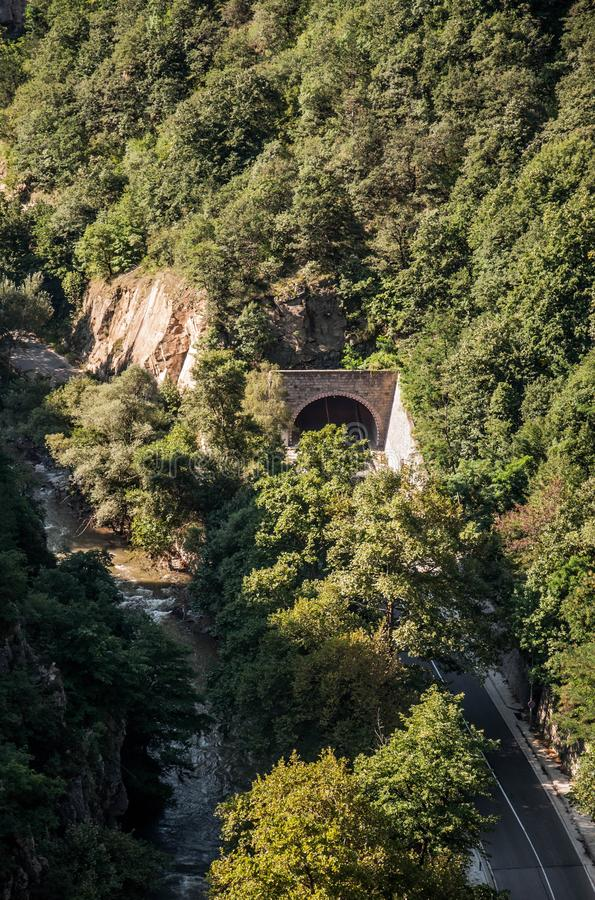 Mountain road tunnel covered with green vegetation stock photography