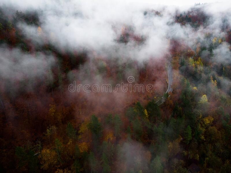 Mountain road winding through a colorful forest covered in fog in Baden-Wuerttemberg, Germany. Mountain road winding through colorful forest covered in fog in royalty free stock photo