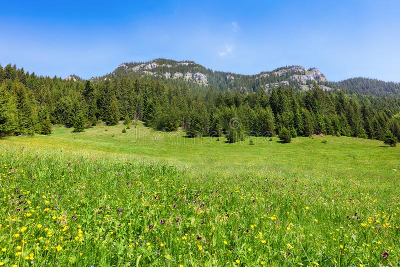 Mountain with rocks and forest - Ohniste, Low Tatras stock photography