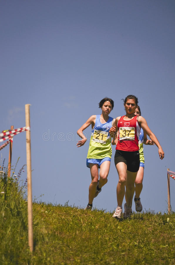 Download Mountain running challenge editorial stock photo. Image of competition - 20041613