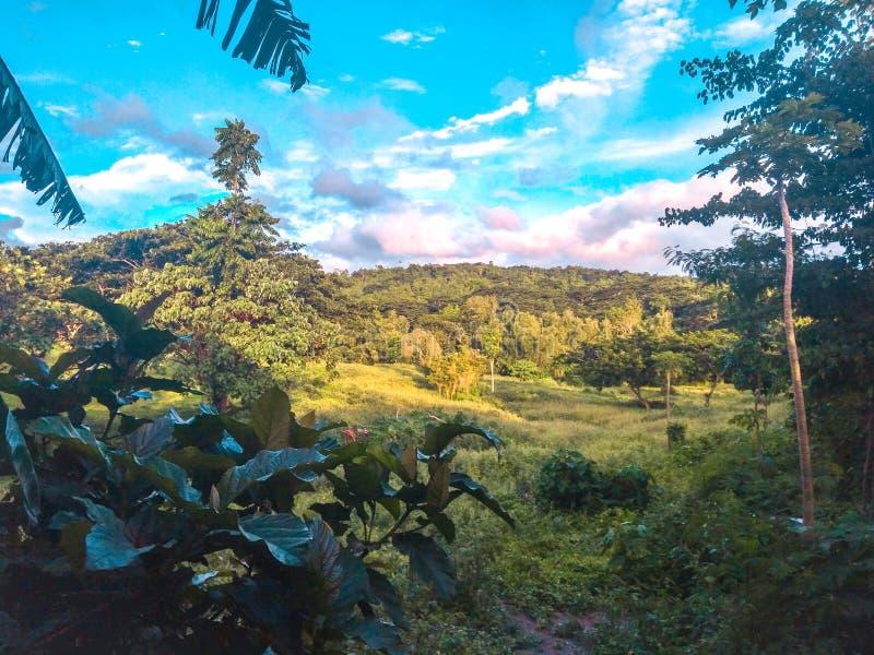 Mountain& x27; s-sikt fotografering för bildbyråer