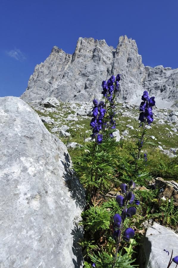 Drei Turme, Drusenfluhgruppe, Ratikon, Switzerland royalty free stock photography