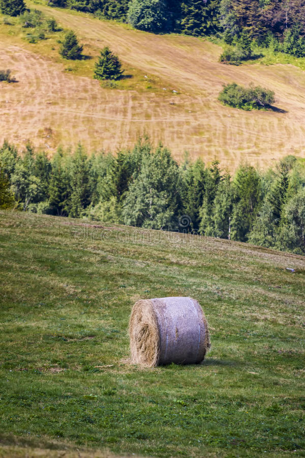 Download Mountain Sheaf. Italy Stock Images - Image: 33668924