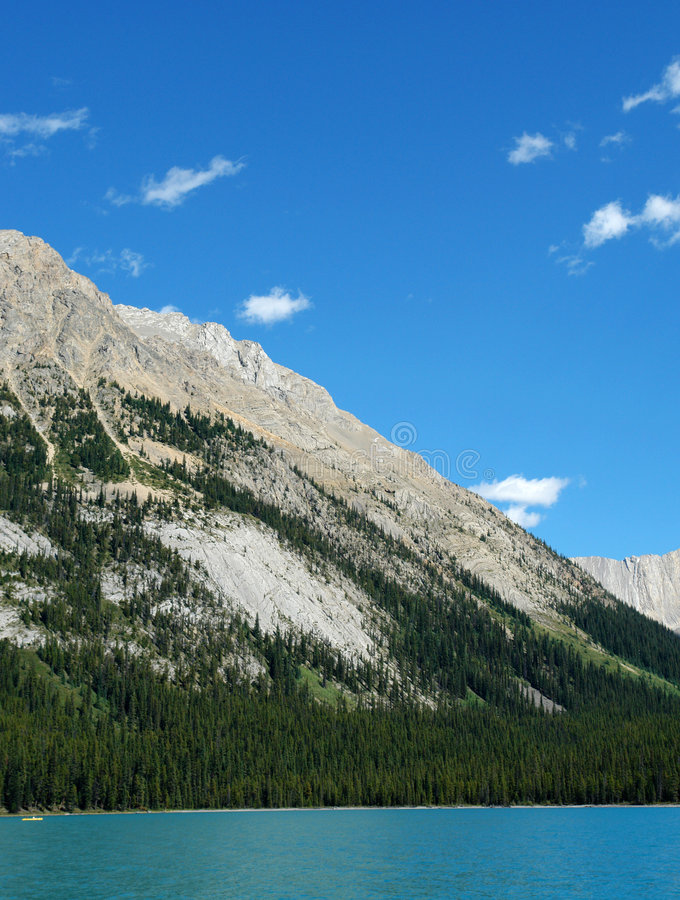 Mountain slope and forest. Rocky mountain slope and forest at maligne lake area, jasper national park, alberta, canada royalty free stock image