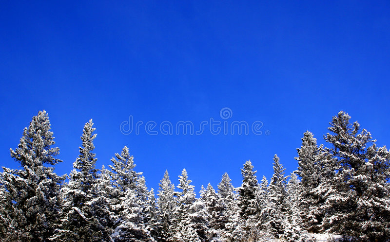 Download Mountain Snow stock photo. Image of snow, season, outdoor - 373364