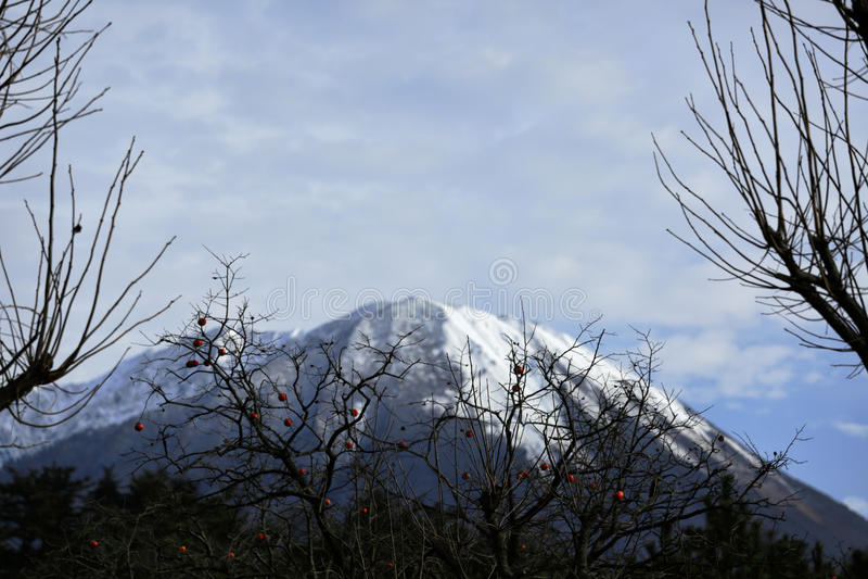 Mountain with the snow royalty free stock photos
