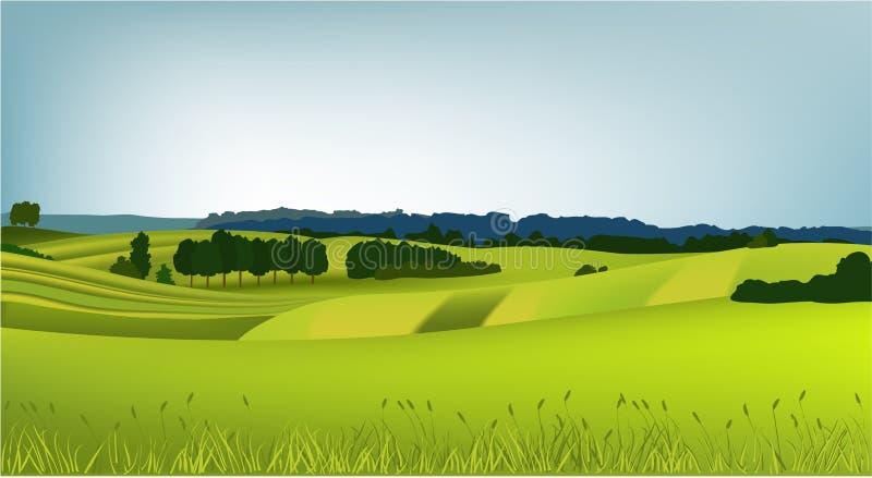 Mountain spring landscape vector illustration