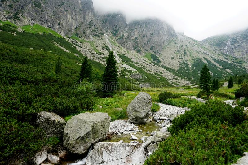 Mountain stone trail through forest in High Tatras. stock image