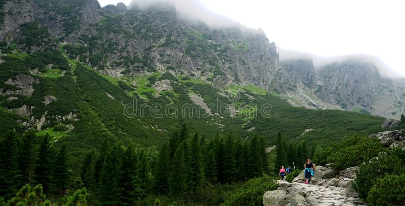 Mountain stone trail through forest in High Tatras. Mountain road in the forest.Journey through the Carpathi stock images