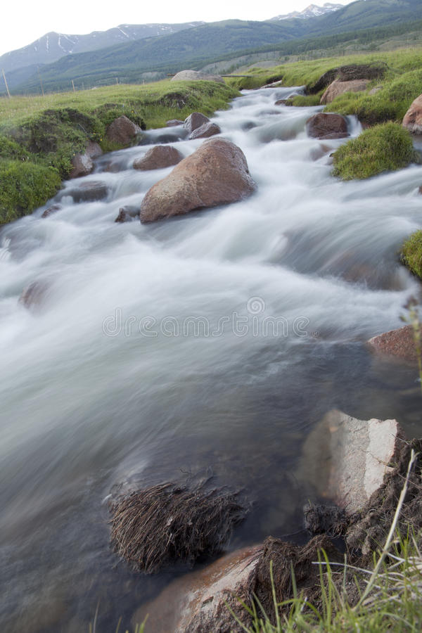 Mountain stream. Summer evening flowing over the rocks royalty free stock photos