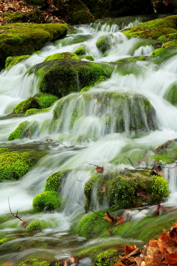 Download Mountain stream stock photo. Image of mossy, falls, creek - 19237176