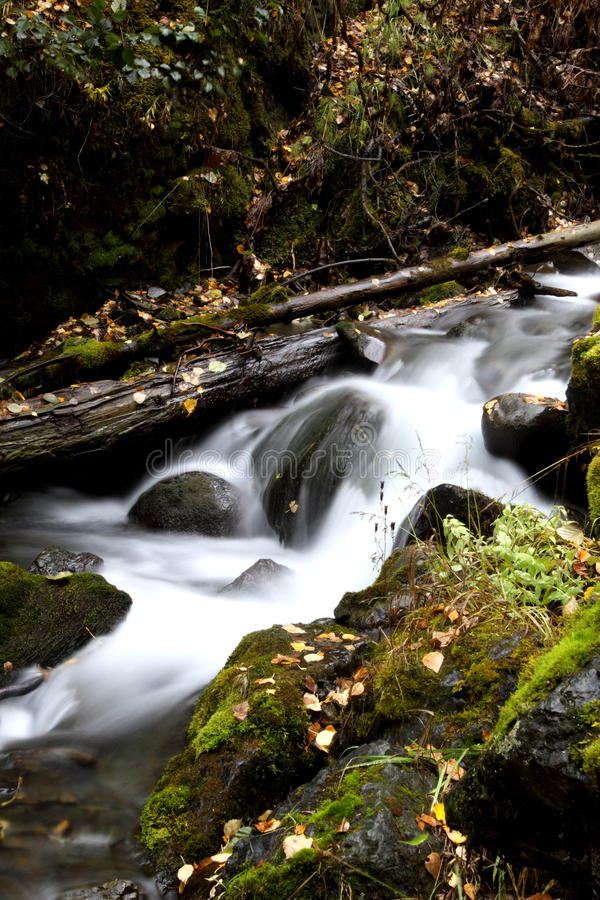 Download Mountain Stream Royalty Free Stock Photography - Image: 22844037