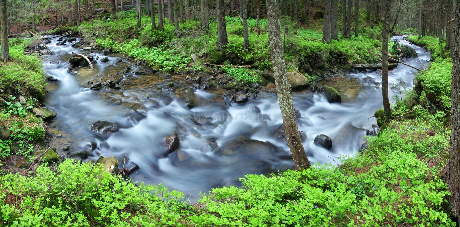 Download Mountain Stream Royalty Free Stock Images - Image: 23827249