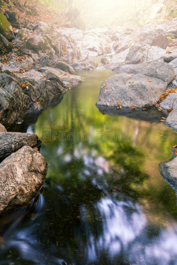 Download Mountain stream stock photo. Image of moss, urban, plant - 26926804