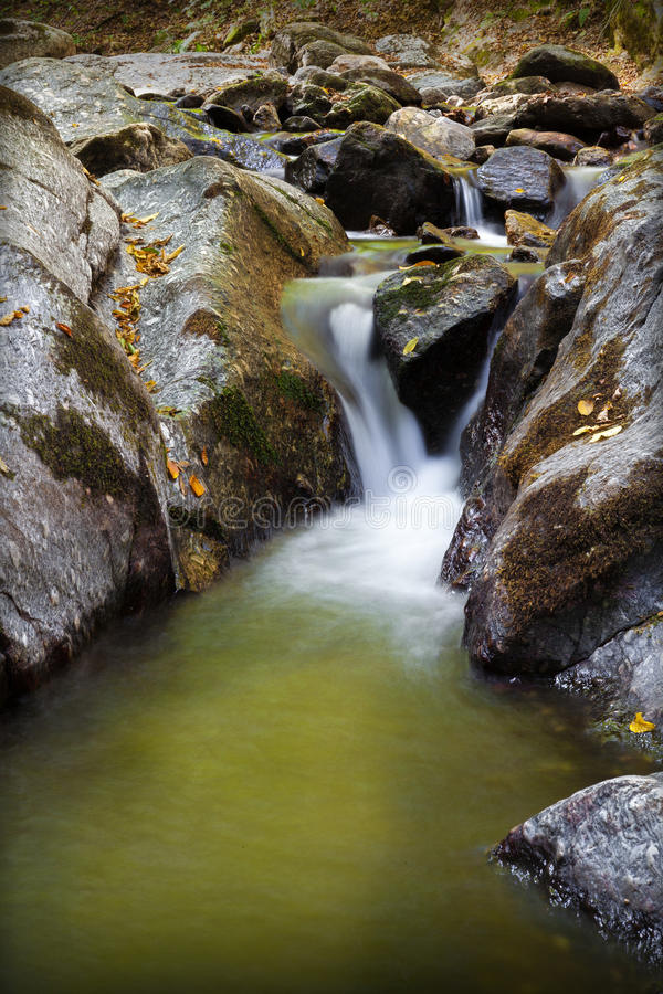 Download Mountain stream stock image. Image of non, flowing, leaf - 26926945