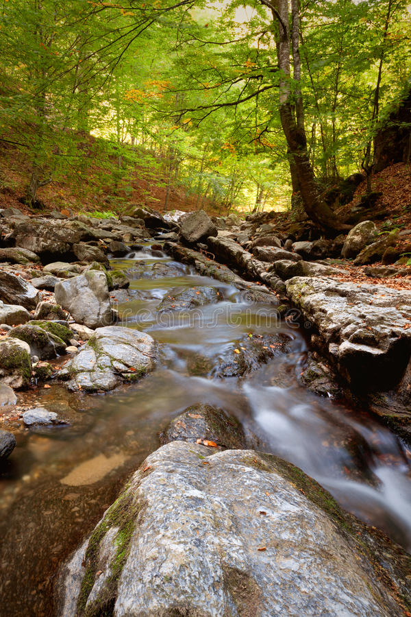 Download Mountain stream stock photo. Image of autumn, leaf, forest - 26927118