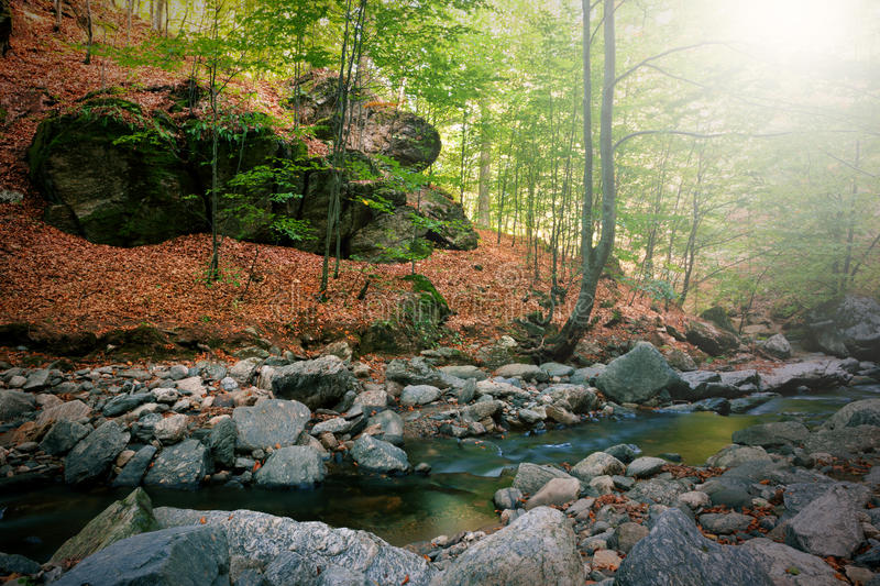 Download Mountain Stream Royalty Free Stock Photography - Image: 26927177
