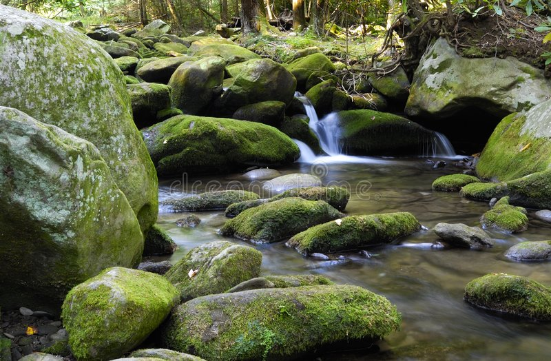 Download Mountain stream stock image. Image of park, tranquil, smokey - 2980687