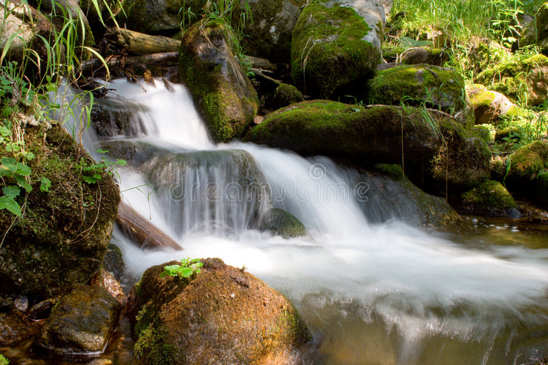 Mountain stream. Running over mossy rocks in siberia (foothills of Sayan's mountain range stock photo