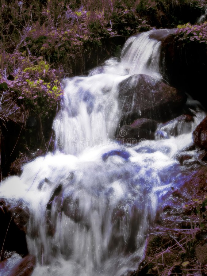 Download Mountain Stream stock photo. Image of spring, waterfall - 49730