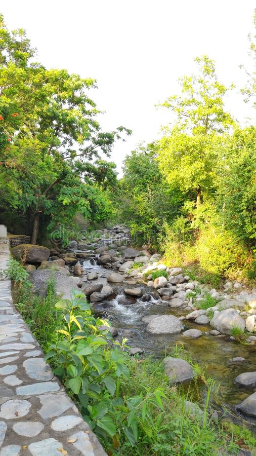 Mountain stream brook silent melody gurgling Himalayan vacation Kangra India green forest remote resort camping outdoors. Mountain stream brook silent melody royalty free stock photography
