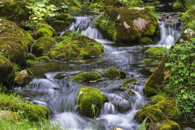 Mountain stream cascading over moss covered rocks wot long expos royalty free stock images