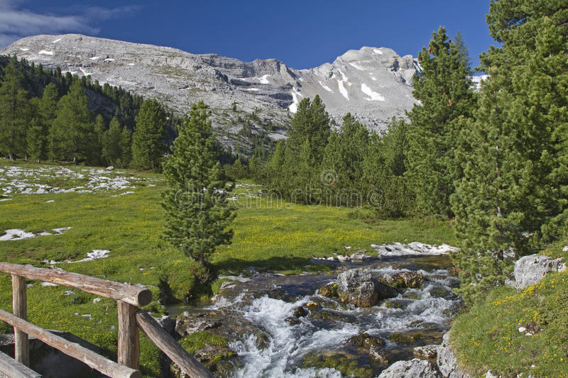 Download Mountain Stream In The Dolomites Stock Image - Image: 20856937