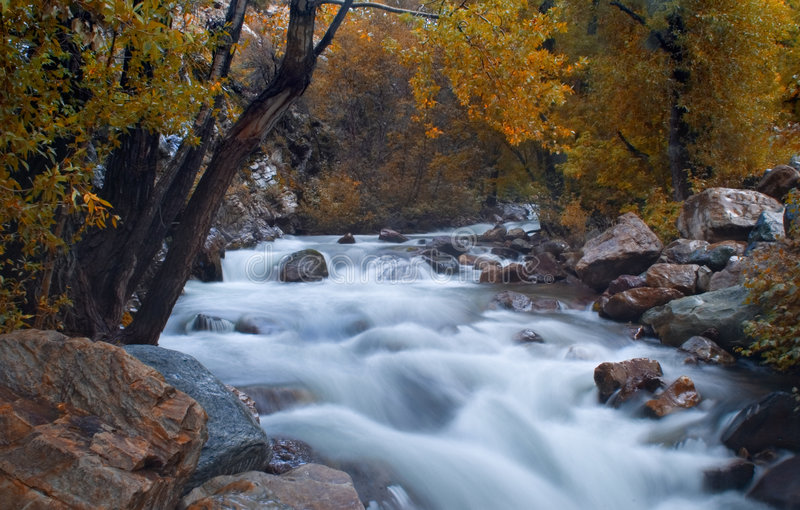 Mountain stream at fall royalty free stock photography
