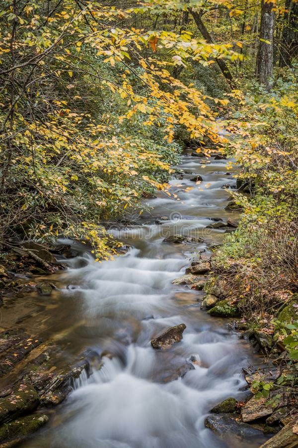 Mountain stream flowing through a forest in fall colors stock photo