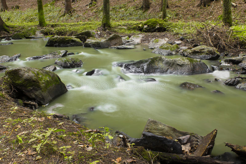 Download Mountain Stream In A Forest Stock Image - Image: 27177757