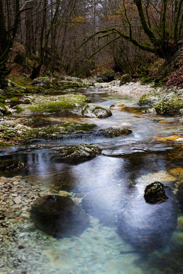 Mountain stream flowing over moss covered rocks in autumn forest royalty free stock image