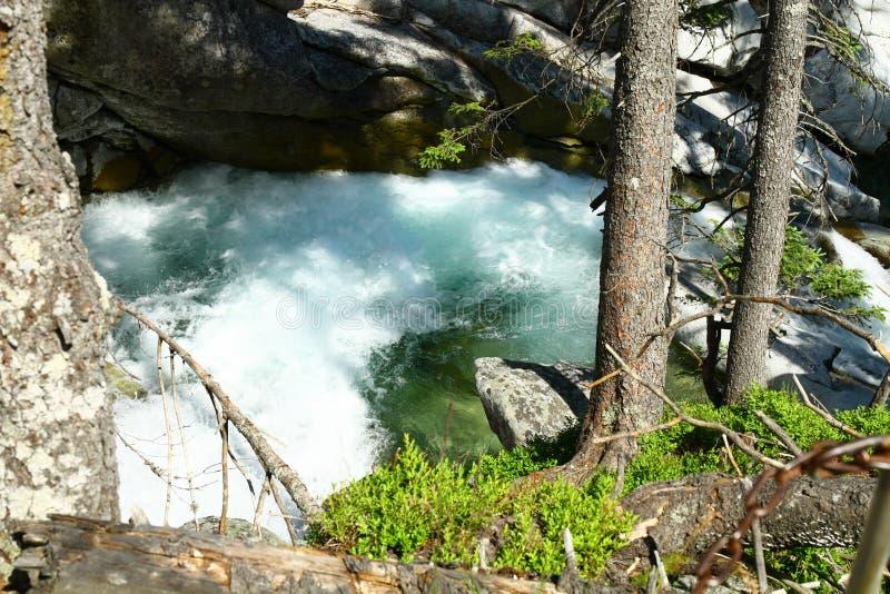Waterfalls of Studeny potok in High Tatras royalty free stock photography