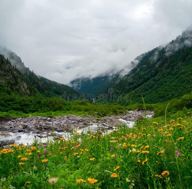 Mountain Stream Landscape In Svaneti Royalty Free Stock Photo
